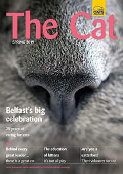 The Cat magazine from Cats Protection