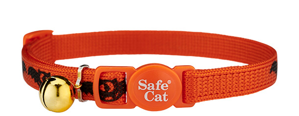 beastly bats halloween cat collar