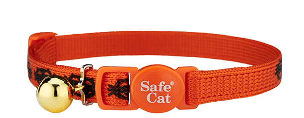 show me the treat first halloween cat collar